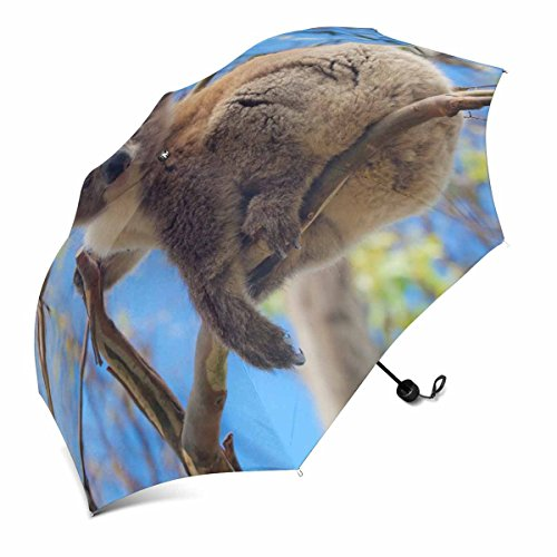 InterestPrint Koala in Great Ocean Road, Victoria, Australia Foldable Portable Outdoor Travel Compact Umbrella (43 Inch) (Cheap Australia Furniture Outdoor)
