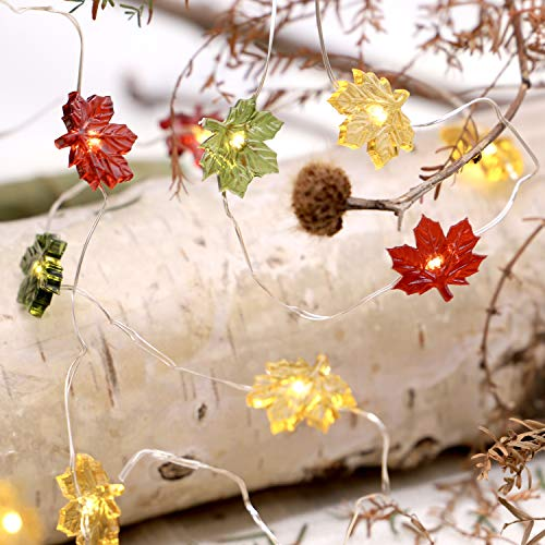 MIYA LIFE Maple Leaf Fairy String Lights 10ft 40LEDs Copper Wire With the Remote & Timer for Thanksgiving Harvest Halloween Christmas Birthday Gift Autumn Indoor Parties Home Bedroom Decoration (Fall Leaf Lights)