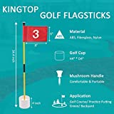 KINGTOP Golf Flagsticks Mini, Putting Green Flags