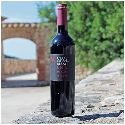51BD265lvpL CLOS-MONTBLANC-Unic-Merlot-100-Organic-Spanish-Red-Wine-Case-of-3-Bottles