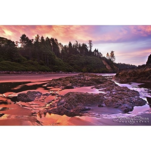 5x7 Olympic National Park Photo,