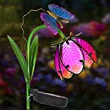 Homeimpro Solar Lights Outdoor,Garden Decor Flower Metal Stake Lights,Metal & Glass Waterproof LED Lights for Lawn,Patio (Pink)