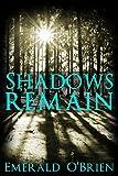 Shadows Remain (Darkness Follows Book 2)