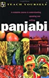 img - for Panjabi with Book (Teach Yourself (McGraw-Hill)) book / textbook / text book