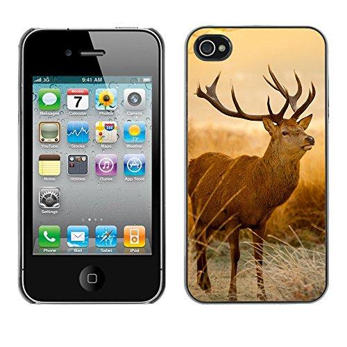 Omega Case PC Polycarbonate Cas Coque Drapeau - Apple iPhone 4 / 4S ( Majestic Stag Deer )