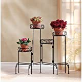 Zingz and Thingz 4-Tier Plant Stand Screen Review