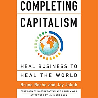 amazon com completing capitalism heal business to heal the world rh amazon com Berrett-Koehler Foundation Berrett-Koehler Publishers Location