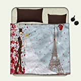 Wedding Flannel blanket French Couple Hand Drawn Paris Eiffel Tower Getting Married Hearts Celebrationblanket queen size Blue Red White