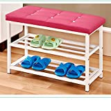 LQQGXL Storage and organization Simple home multi-storey dust-proof living room simple assembly multi-purpose shoes (Color : Red)