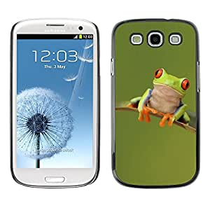 rígido protector delgado Shell Prima Delgada Casa Carcasa Funda Case Bandera Cover Armor para Samsung Galaxy S3 I9300 /Frog Happy Cute Green Animal/ STRONG