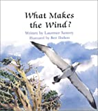 img - for What Makes the Wind book / textbook / text book