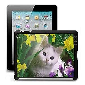 CL - Efecto 3D Negro caja de plástico cubierta posterior para el iPad 2/3/4