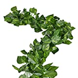 Rurality 16 Ft - 2 Artificial Ivy Silk Greenery Fake Hanging Vines Wedding Garland,Epipremnum Aureum, Pack of 2
