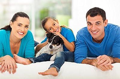 Pet Back Seat Car Dog Barrier- One size fits all - LIFETIME WARRANTY!