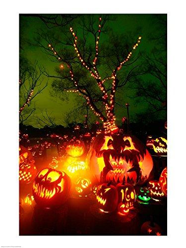 Jack o' Lanterns lit up at Night, Roger Williams Park Zoo, Rhode Island Art Print, 20 x 26 inches -