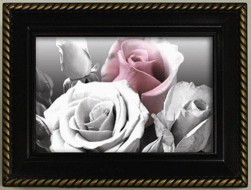 Galleria Music Box Antique Rose Black Jewelry Trinket Holder - Galleria Antique Rose