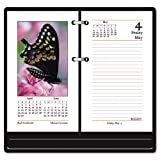 At-A-Glance(R) Full-Color Desk Calendar Refill, 3 1/2in. x 6in.