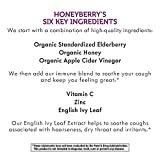Nature's Way Sambucus HoneyBerry Cough Syrup for