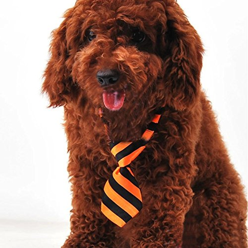 EOM Selected Adjustable Dog Bow Tie Puppy Pet Costume Collar Stripe Bow Tie Dogs Cats Puppy Tie Neck Tie - Perfect for Wedding Tie Party Accessories (Dog Necktie-orange/black stripe) - Neckties Dog Accessories