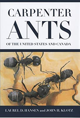 Carpenter Ants of the United States and Canada: Amazon co uk