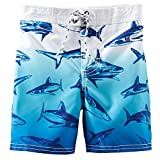 Oshkosh B'gosh Boys' Swim Trunks (6, Blue Sharks)