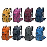 Mountaintop 40L Hiking Daypack/Camping Backpck/Travel Daypack/Casual Backpack with Rain Cover for Outdoor Climbing School