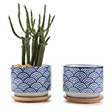 T4U 3 Inch Ceramic Japanese Style Serial No.3 succulent Plant Pot/Cactus Plant Pot