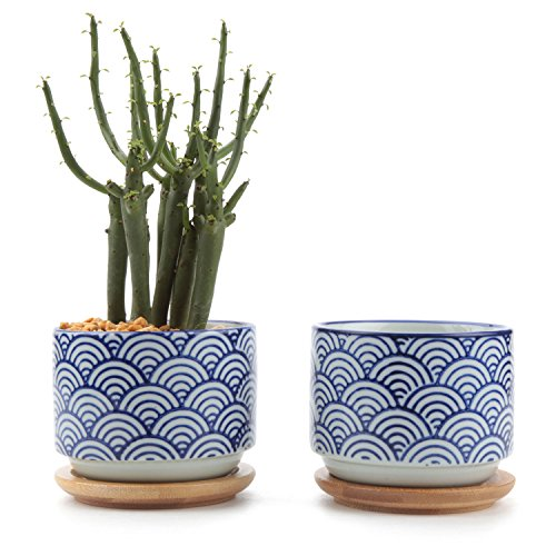 (T4U 3 Inch Ceramic Japanese Style Serial No.3 Succulent Plant Pot, Blue Waves Cactus Plant Pot Flower Pot/Container/Planter White Package 1 Pack of 2)