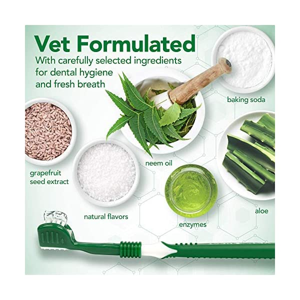 Vet's Best Enzymatic Dog Toothpaste | Teeth Cleaning and Fresh Breath Dental Care Gel | Vet Formulated 5