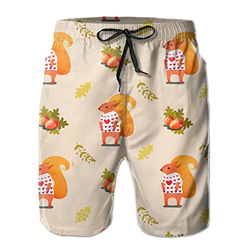(Qpkia Awesome Pattern Squirrel Men Swim Trunks Quick Dry Board Shorts Pants)