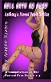 img - for Hell Hath No Fury: Anthony's Forced Feminization book / textbook / text book