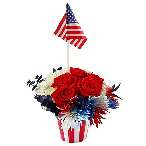 eFlowy - Patriotic Floral Vase by eFlowy