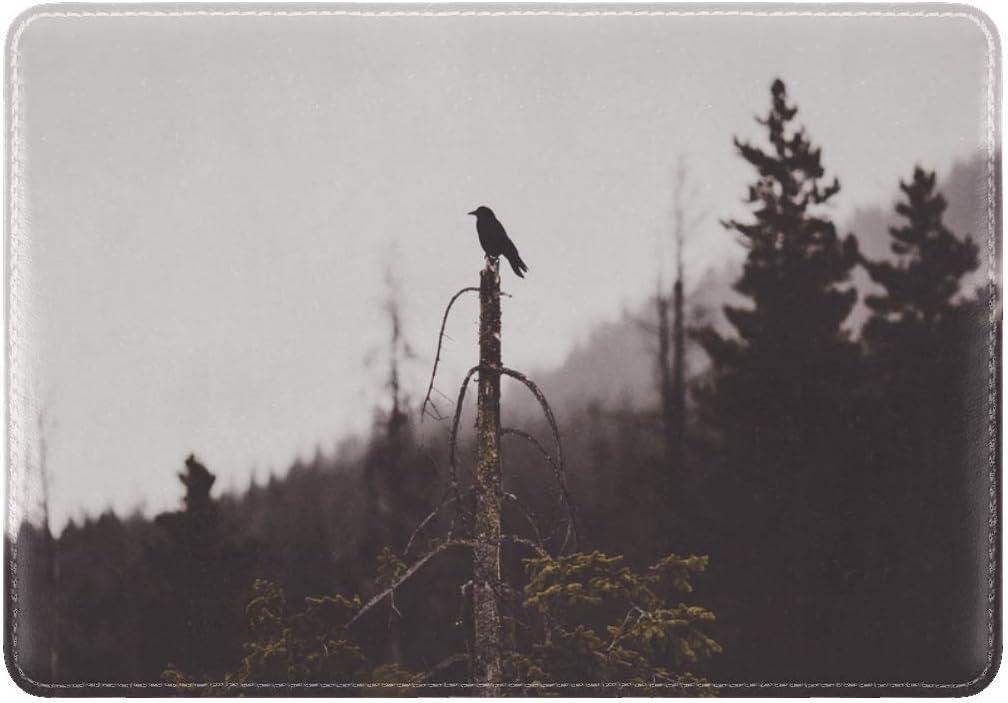 Bird Tree Gloomy Leather Passport Holder Cover Case Travel One Pocket