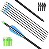 I-sport 31 Inch 7.8mm Shaft Mixed Carbon Arrows Archery Targeting Practice Arrows