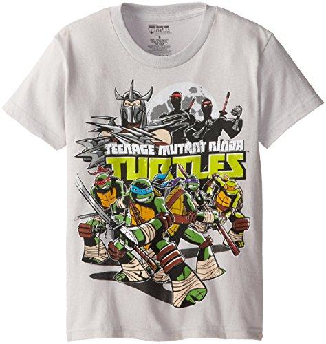 Teenage Mutant Ninja Turtles Big Boys' Group T-Shirt Shirt, Silver, Large/  14/16 - Big Ninja Turtles