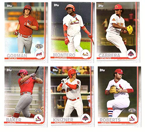 (2019 Topps Pro Debut - St. Louis Cardinals - 6 Card Team Set)
