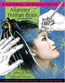A Colorful Introduction To The Anatomy Of Human Brain And Psychology Coloring