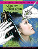 A Colorful Introduction to the Anatomy of the Human Brain 2nd Edition