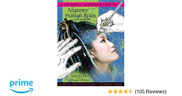 Amazon.com: A Colorful Introduction to the Anatomy of the Human ...