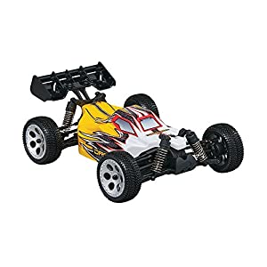 Dromida 1:18 Scale RTR Remote Control RC Car: Electric 4WD BX Buggy with 2.4GHz Radio, 7.2V 6C 1300mAh NiMH Rechargeable Battery, 4 x AA Batteries and Charger