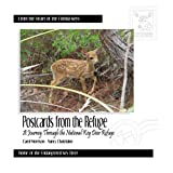 img - for Postcards From the Refuge: A Journey Through the National Key Deer Refuge book / textbook / text book