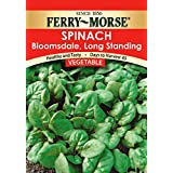 Ferry Morse Bloomsdale Spinach Seeds