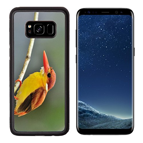 Luxlady Premium Samsung Galaxy S8 Aluminum Backplate Bumper Snap Case IMAGE ID 31333271 Bird Rufous backed Kingfisher Thailand