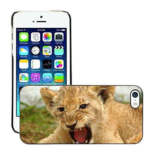 Premio Sottile Slim Cassa Custodia Case Cover Shell // V00002139 lionceau // Apple iPhone 5 5S 5G