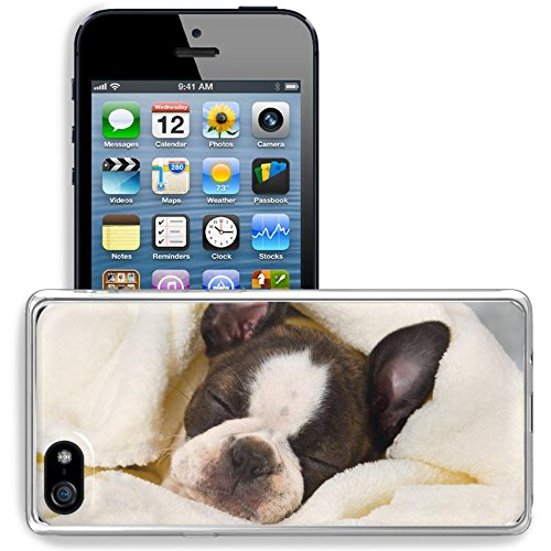 (Liili Apple iPhone 5/iPhone 5S/iPhone SE Clear case Soft TPU Rubber Silicone Bumper Snap Cases iPhone5/5S Boston terrier sleeping in white towels studio shoot Photo 20130004)
