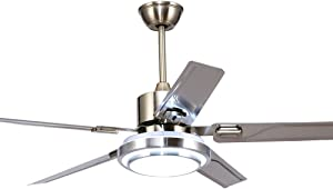 RainierLight Modern Ceiling Fan 5 Stainless Steel Blades Remote Control LED 3 LED Changing Light (White/Warm/Yellow) for Indoor Mute Energy Saving Electric Fan (48inch)
