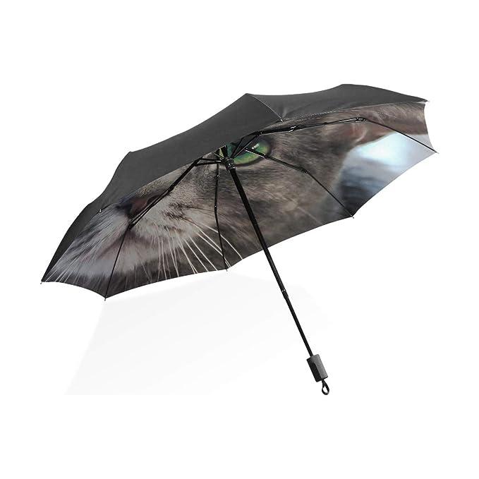Paraguas grandes para la lluvia A prueba de viento Animales Gatos ...