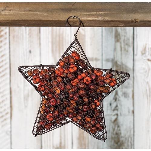 (Heart of America Wire Mesh Star with Pumpkin Spice Potpourri 9