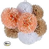 MOWO Tissue Paper Pom Poms Flower, 18pc Paper Flower DIY Wedding Engagement BabyShower Birthday Garden Party Events Decor,12'' 10'' (Champagne tan,peach,white, 18 pack)