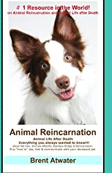 Animal Reincarnation: Everything You Always Wanted to Know! about Pet Reincarnation plus